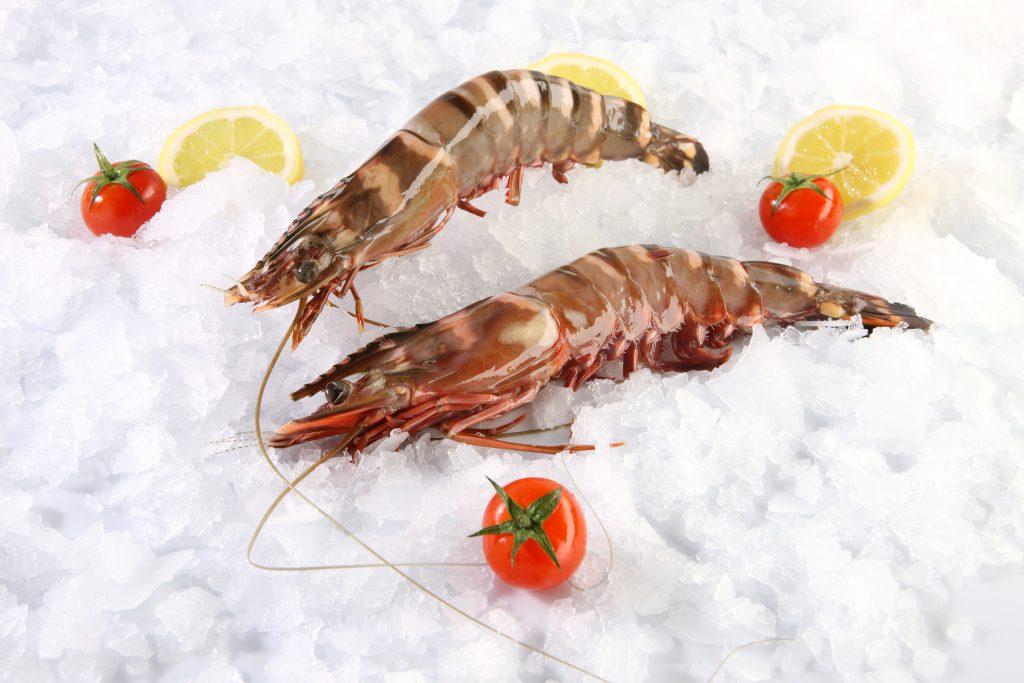 Shrimp head-on Nigerian