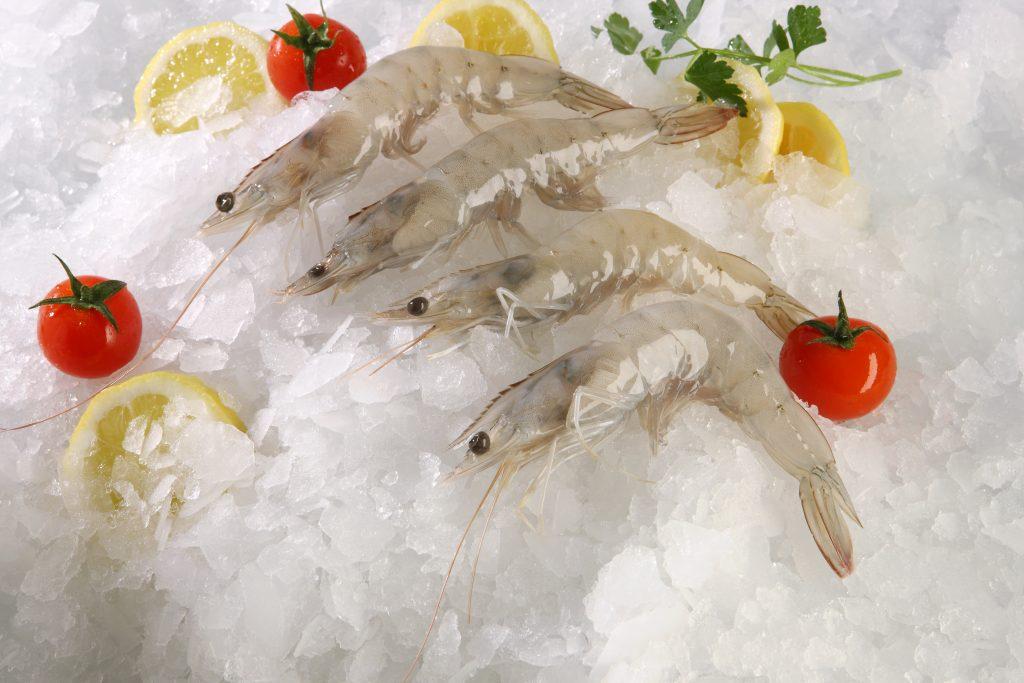 Shrimps head- on Ecuador