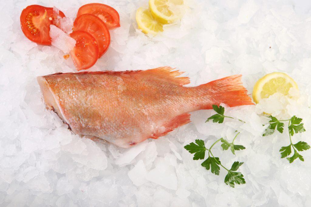 Redfish headless