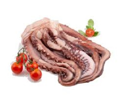 Giant squid tentacles